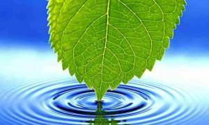 Питьевая вода и борьба с раком