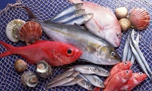 Где заказать качественные рыбные изделия?