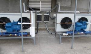 Где правильно приобрести промышленные холодильные установки?