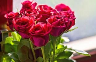 Доставка цветов в Украине