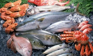 Как вводить рыбу в рацион ребенка?