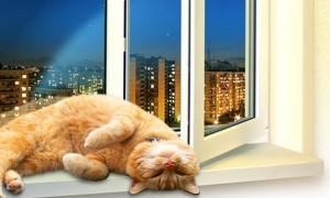 Что представляют из себя окна ПВХ?