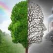 Что такое экологическая сертификация?