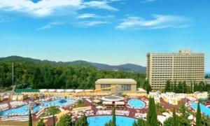 Как спланировать отдых в Сочи?